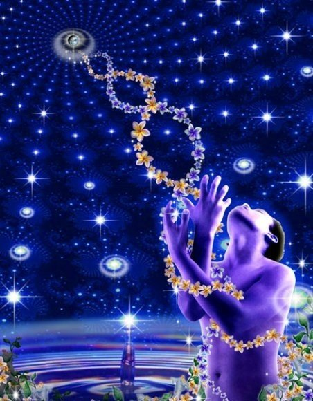 12-strand-DNA2